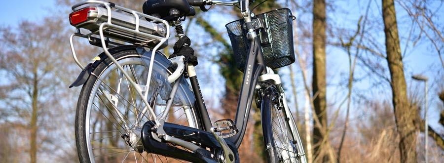 e bike pedelec g nstig kaufen kaufberatung fahrrad. Black Bedroom Furniture Sets. Home Design Ideas
